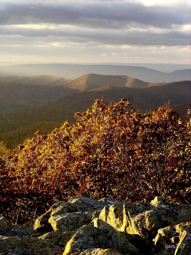 Bear Fence Overlook by ijam357