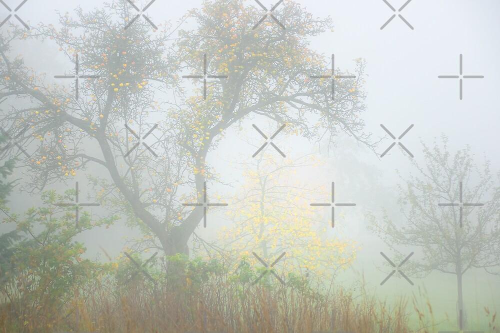 Gold Tree by Rainer Kuehnl