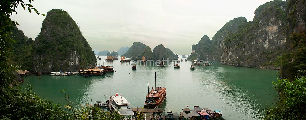 Junk Boats at Halong Bay by emmettm