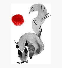 watercolor squirrel. Watercolor hand drawn brush vector  Photographic Print
