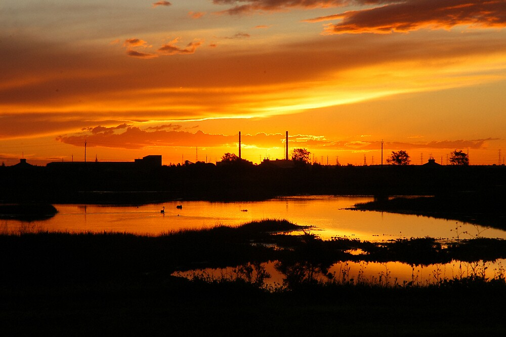 Salisbury wetlands sunset by Christopher Walls