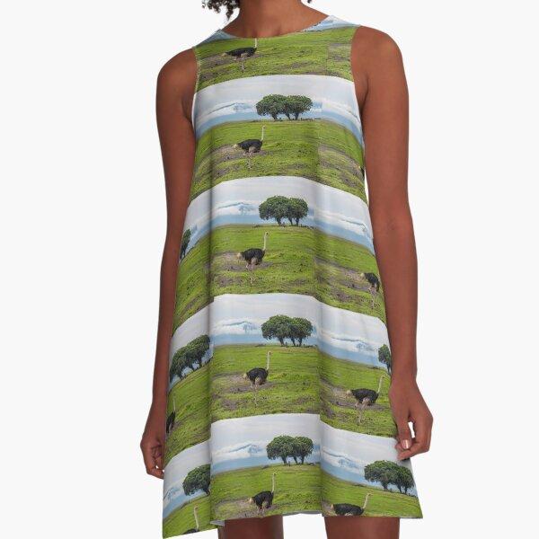 Tanzania. Ngorongoro Conservation Area. Ostrich. A-Line Dress