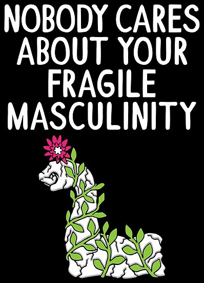 f8c943aa7837 Nobody Cares About Your Fragile Masculinity - Funny Feminist Quotes Gift