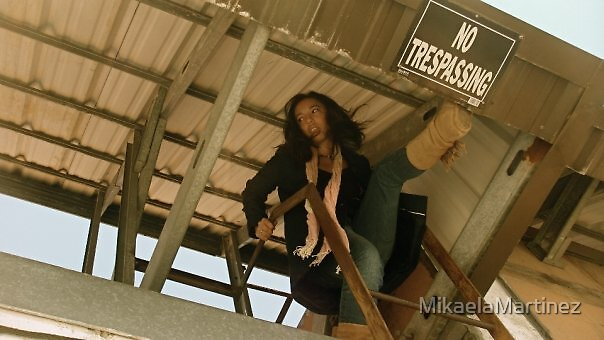 No Trespassing by MikaelaMartinez