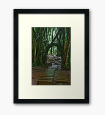 Doorway To The Enchanted Rain Forest Framed Print