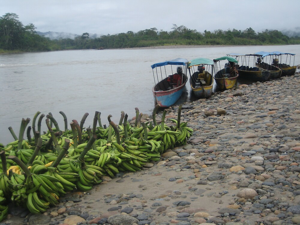 Bananas by the Riverside by Whittzy