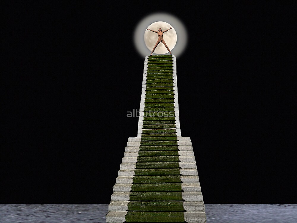 A Stairway to the Moon. by albutross