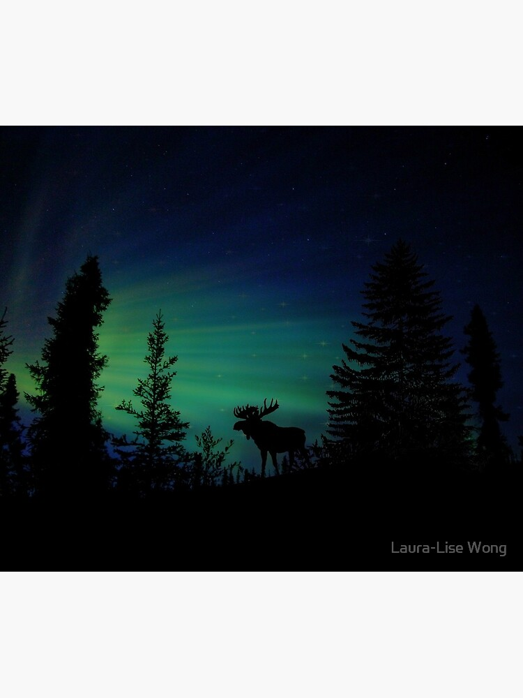 Moose with Northern Lights by crazycanonmom