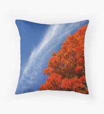 Fall at Tufts Throw Pillow