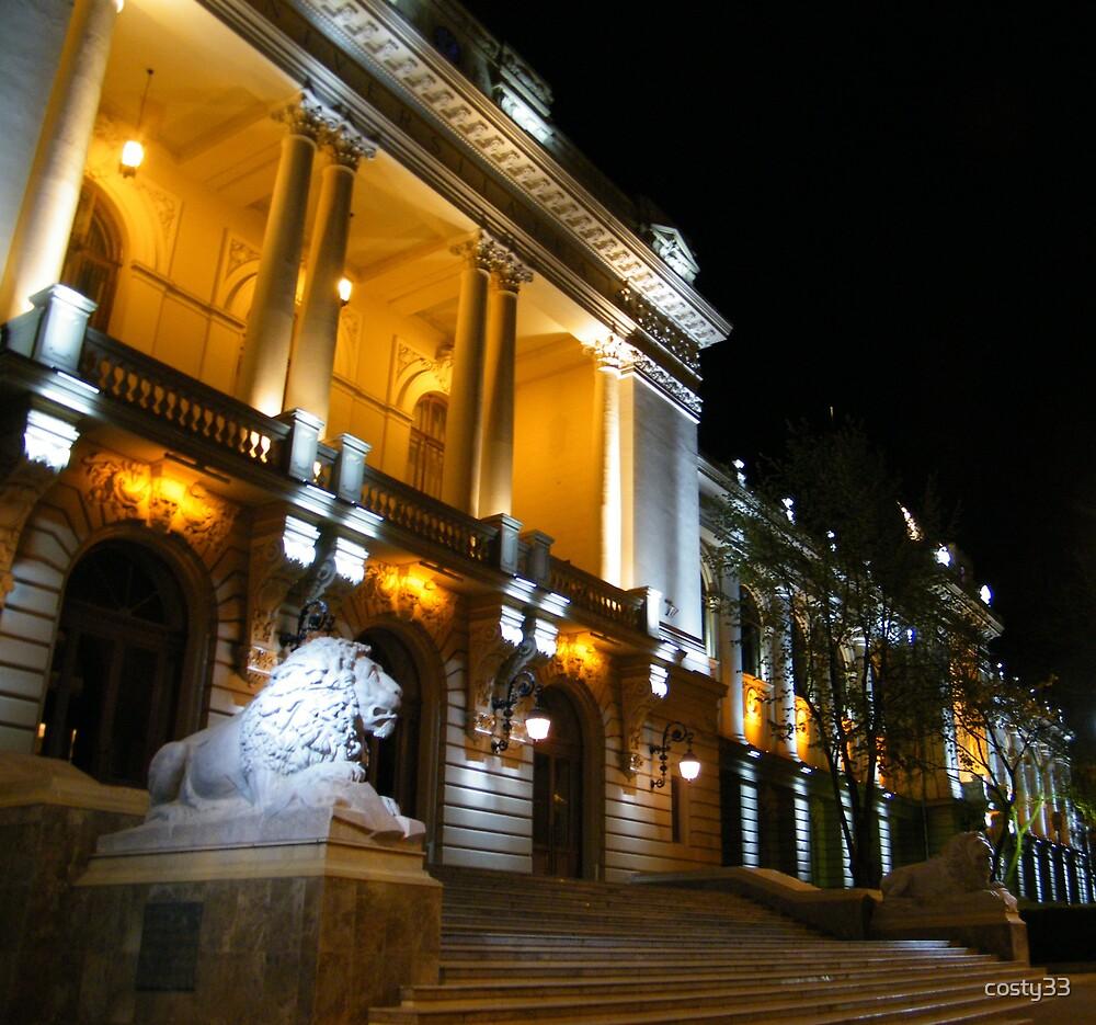 Lions university by costy33
