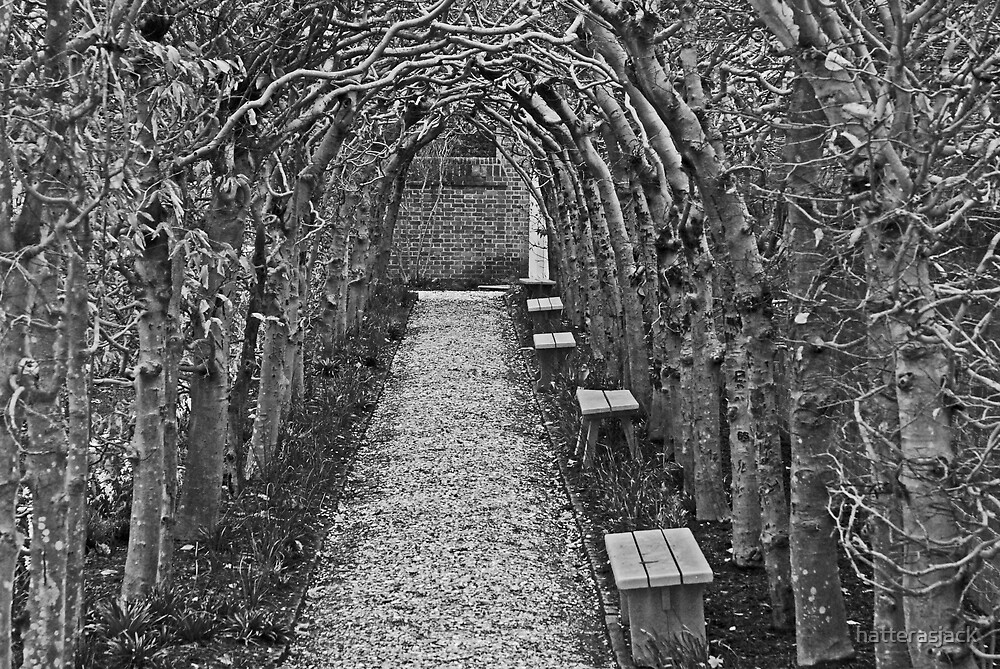 Wooden Arches by hatterasjack