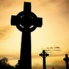 High Crosses by Finbarr Reilly