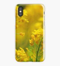 Golden Alyssum Close Up iPhone Case