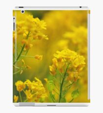Golden Alyssum Close Up iPad Case/Skin