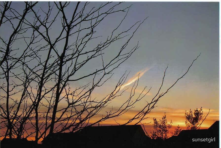 Golden Sunset by sunsetgirl