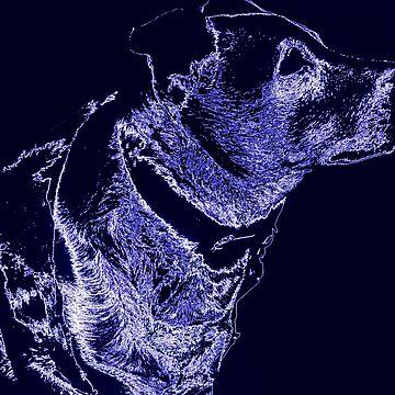 Majestic Blue Jack by LaurenPryde