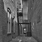 Dark Alley by Wendy Mogul