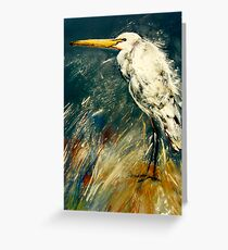 All feathered up Greeting Card