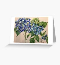 blue hydrangea blooms Greeting Card