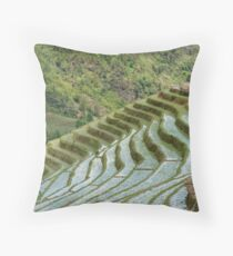Rice/Padi Field, Sapa, Vietnam Throw Pillow