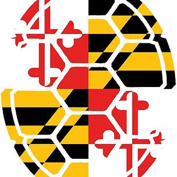 Maryland Flag Shell by harringe