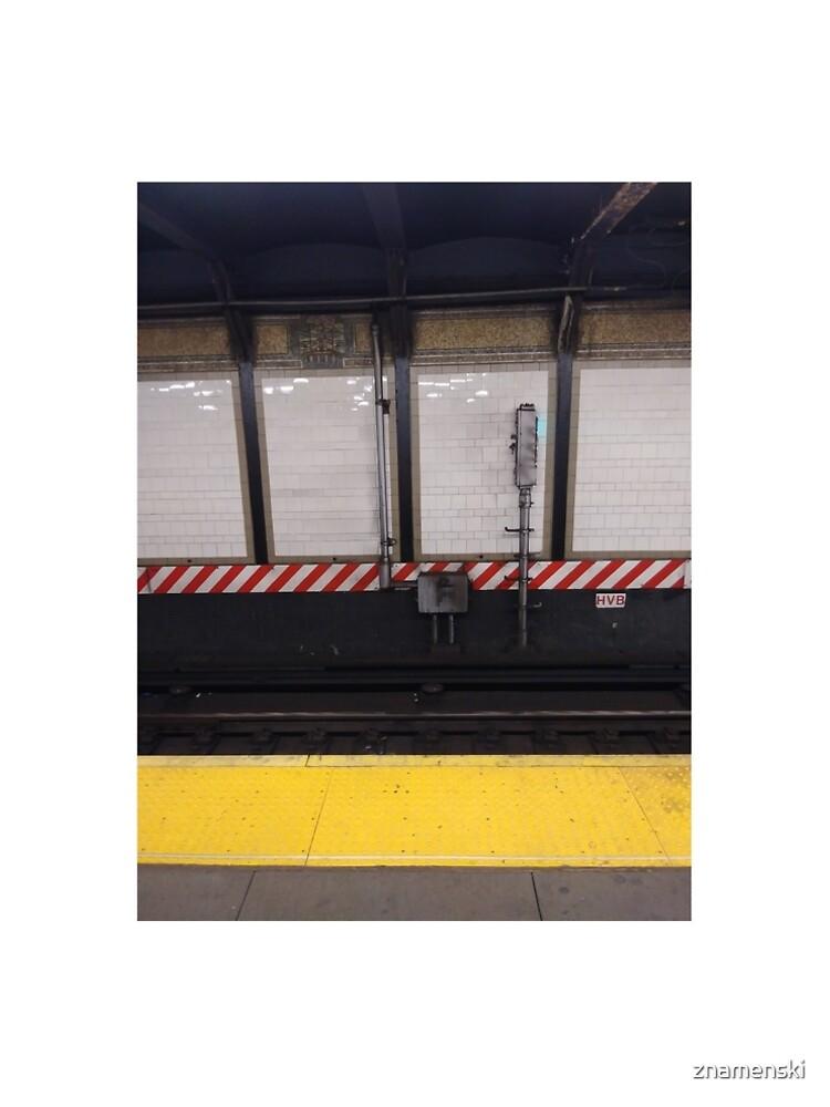 Happiness, Building, Skyscraper, New York, Manhattan, Street, Pedestrians, Cars, Towers, morning, trees, subway, station, Spring, flowers, Brooklyn by znamenski