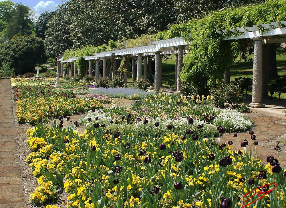 Maymont Garden by David W Kirk