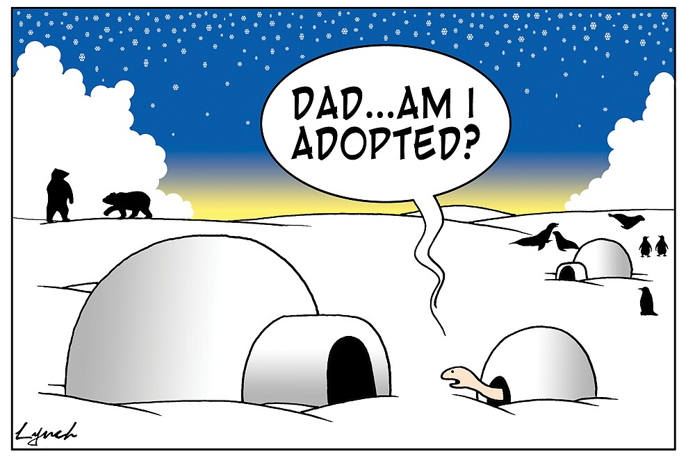 adopted by Mark  Lynch