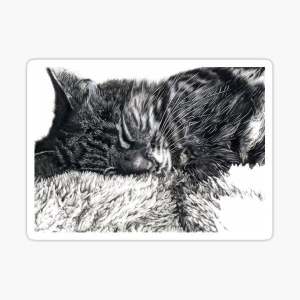 Charlie Cat Sticker