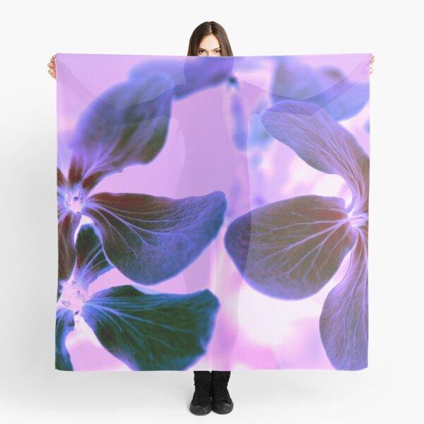Purple Phlox Flowers Scarf