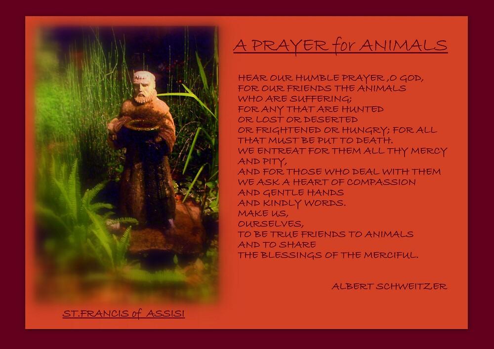 '' A PRAYER FOR ANIMALS ''  by Albert Schweitzer by Dalzenia Sams