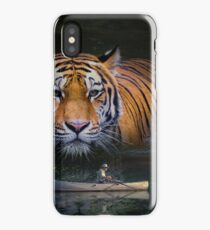 Fantasy Picture-001 iPhone Case