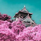 Infa Red - Osaka Castle by Kirk  Hille