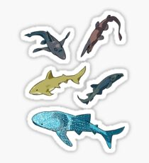 sharks Sticker