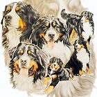 Bernese Mountain Dog Medley by BarbBarcikKeith