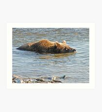 Bear Series # 17 Art Print