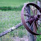 Country Fence by DesignsByDeb