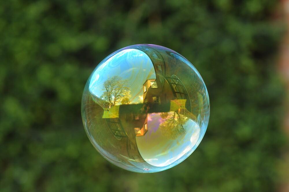 Earth Bubble by Richard Heeks