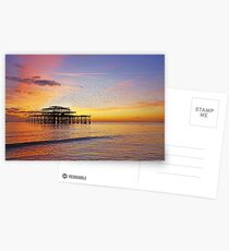 West Pier Murmuration Postcards