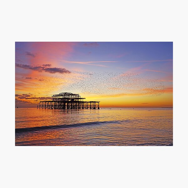 West Pier Murmuration Photographic Print