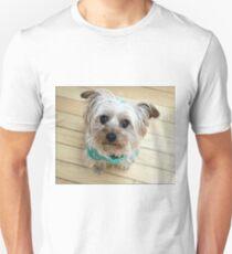 Sox Looking At You Slim Fit T-Shirt