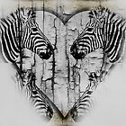Zebras by CarolM