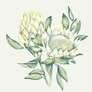 Protea by youdesignme