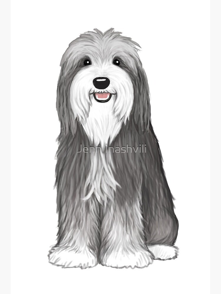 Cute Bearded Collie Cartoon Dog Art Board Print By Shortcoffee