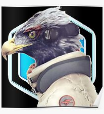 ~ Star Fox: Falco ~ Poster