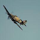 Hawker Hurricane Mk IIB BE505 by larry flewers