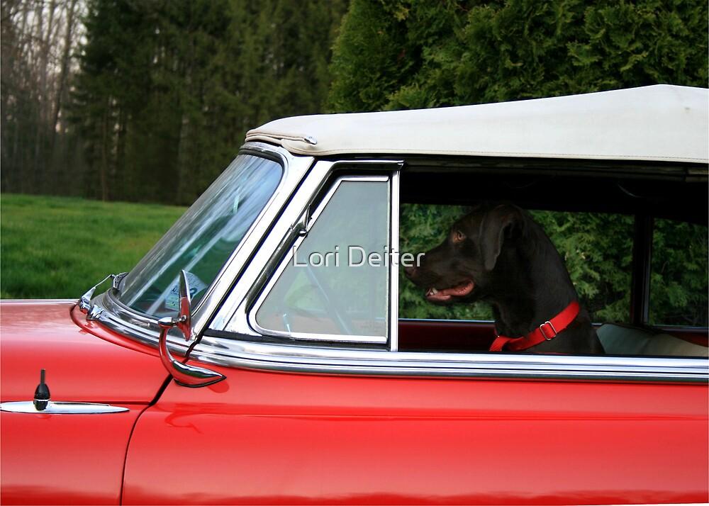 DOG GONE DRIVER by Lori Deiter