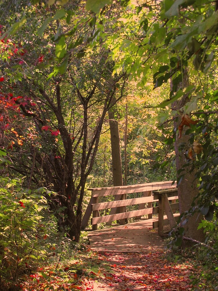 Romantic Stroll by caybeach