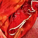 Indian Elegance  by Tash  Menon