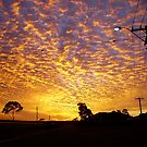 Sunrise by ingridrob